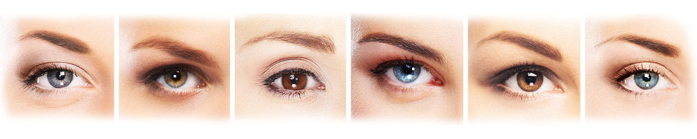 flera ögon och ögonbryn